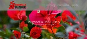 Bouganvillia Dell Nursery - Website Image