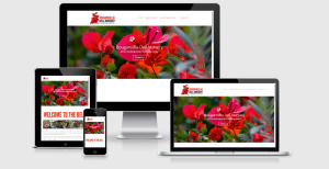 Bouganvillia Dell Nursery - Website Image