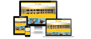 Nerdyness_Portfolio_Sundowner_Camel_Tours_Website_Screen_Shot_JPEG