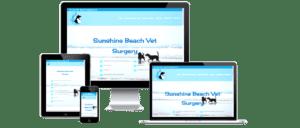 Sunshine-Beach-Vet-Screenshot-PNG